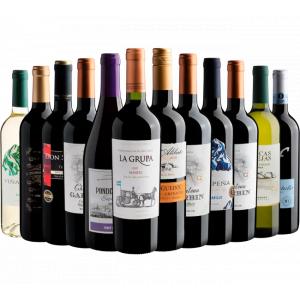 Kit com 12 Garrafas de Vinho por R$21,90 Cada