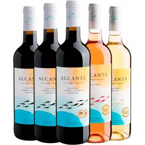 Kit Vinhos Família Alcanta - Vários Tipos